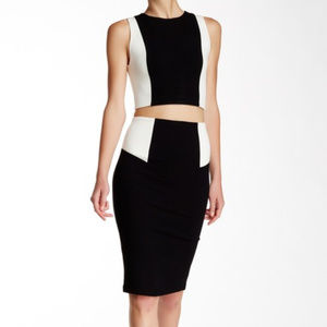 alice + olivia colorblock pencil skirt and top